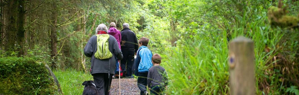 Guided Walks of Leitrim, an engaging way to learn about its land and heritage.