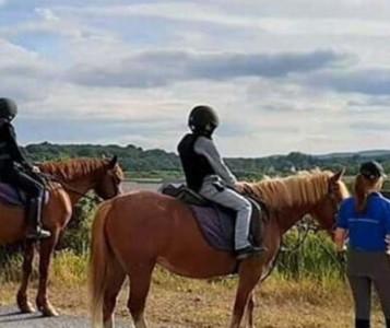 Children pony trekking